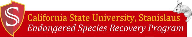 California State University Stanislaus, Endangered Species Recovery Program.  Rabbit graphic courtesey Tristan Edgarian
